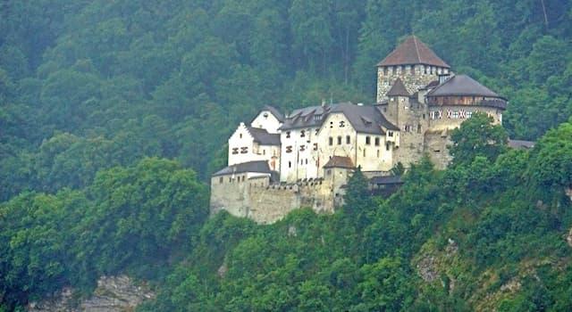 Общество Вопрос: Какой язык является официальным в карликовом европейском государстве Лихтенштейн?