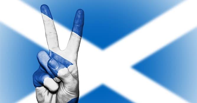Спорт Вопрос: Какой забавный вид спорта зародился благодаря шутке шотландца Робина Дансита в 1977 году?