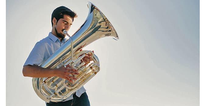 Культура Вопрос: На каком инструменте играет музыкант?