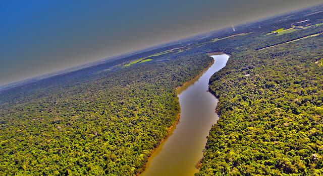 География Вопрос: На территории каких стран протекает река Парана?