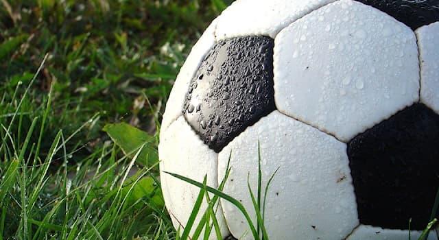 Спорт Вопрос: Приз Ди Стефано — это награда, вручаемая лучшему футболисту какой страны?