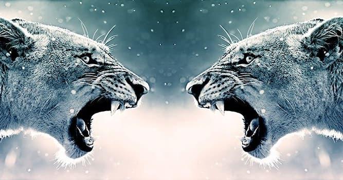 """Природа Вопрос: Самец какого животного из перечисленных способен впадать в агрессивное состояние, которое называется """"муст""""?"""
