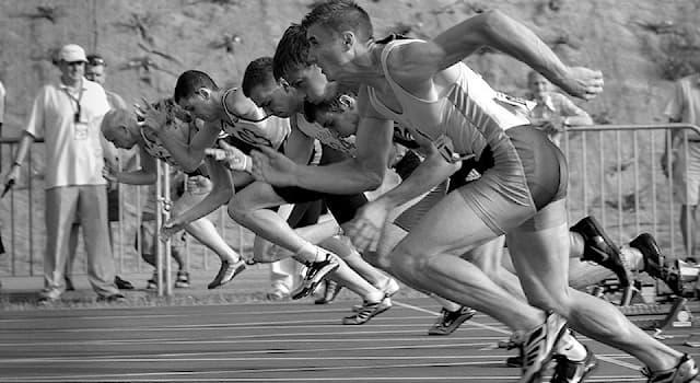 Спорт Вопрос: В каких спортивных дисциплинах фактор ветра является часто решающим для результатов спортсменов?