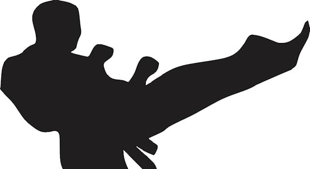Спорт Вопрос: В какой стране зародилось древнее боевое искусство и оздоровительная система Нятнам?