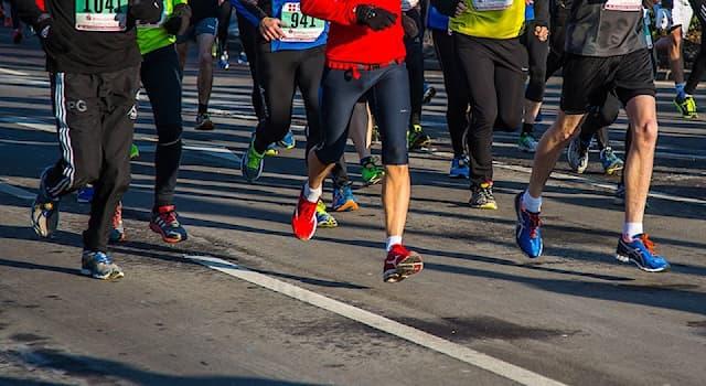 Спорт Вопрос: В каком европейском городе каждый год 1 января ровно в полночь проводится Новогодний марафон?