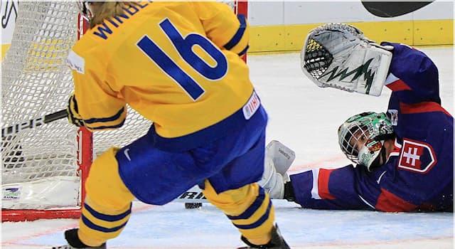 Спорт Вопрос: В каком году состоялся первый международный турнир по хоккею с шайбой среди женских команд?