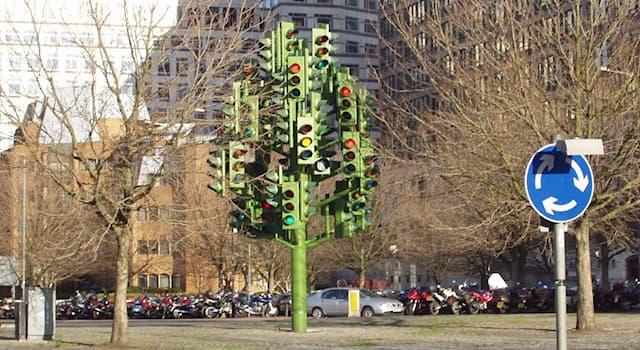 География Вопрос: В каком городе в 1999 году появилось светофорное дерево, изображенное на фотографии?