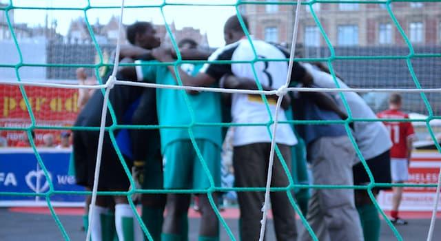 Спорт Вопрос: В каком виде спорта ежегодно проводится чемпионат мира среди бездомных?