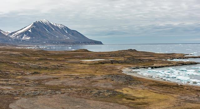 География Вопрос: В составе какой страны находится Девон – крупнейший необитаемый остров на земном шаре?