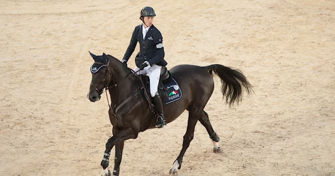 Sport Trivia Question: Since which year have the FEI World Equestrian Games (championships for equestrianism) been held?