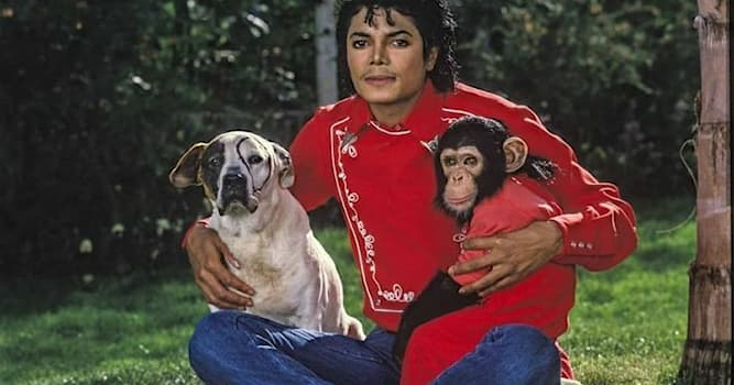 Culture Trivia Question: Which is a Michael Jackson song?