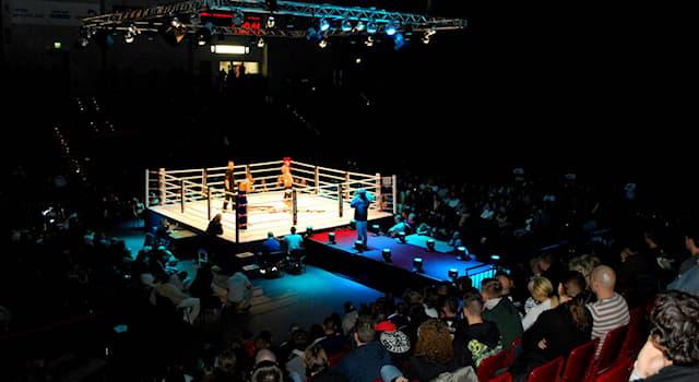 Спорт Вопрос: Что такое MMA?