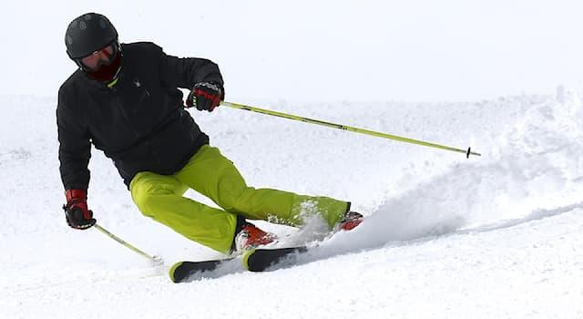 Спорт Вопрос: Дисциплинами какого вида спорта являются лыжная акробатика, могул, ски-кросс, лыжный хафпайп, слоупстайл?