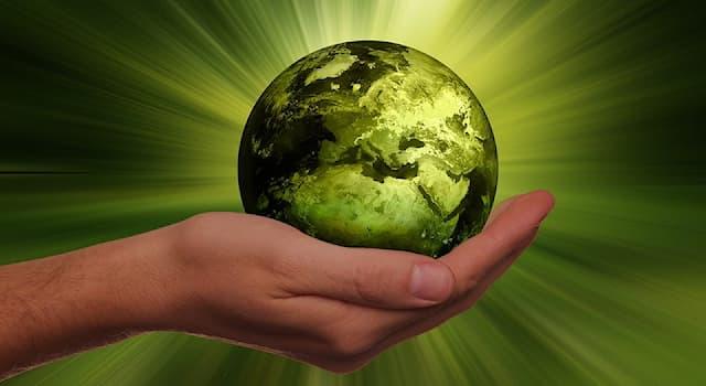 Наука Вопрос: Как называется наука о химическом составе Земли и планет?
