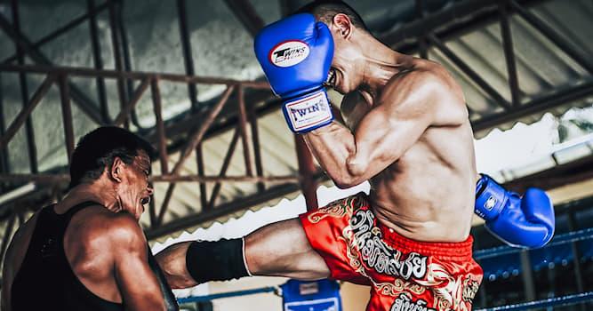 Спорт Вопрос: Как называется один из наиболее престижных турниров по профессиональному тайскому боксу?