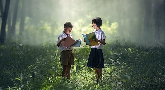 Культура Вопрос: Как называется первый в английской литературе роман, главным героем которого стал ребёнок?