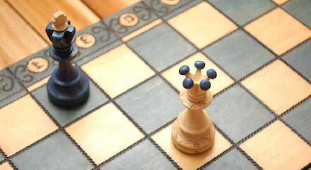 Спорт Вопрос: Как называется положение в шахматах, если игроку, у которого право хода, некуда ходить, а король не атакован?