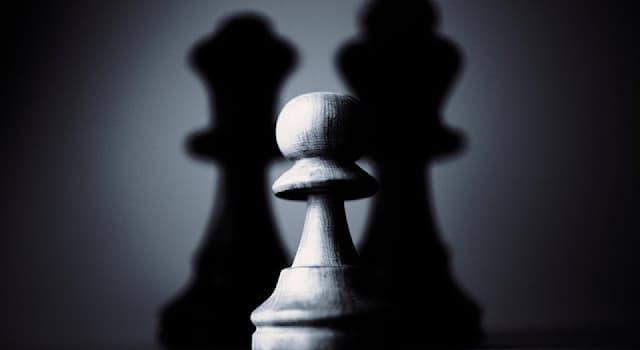 Спорт Вопрос: Как называется шахматная фигура, которая НЕ может ходить и наносить удар назад или по горизонтали?