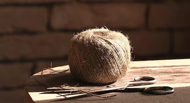 Общество Вопрос: Как называется тонкая прочная нить для упаковки, сшивания и других целей?
