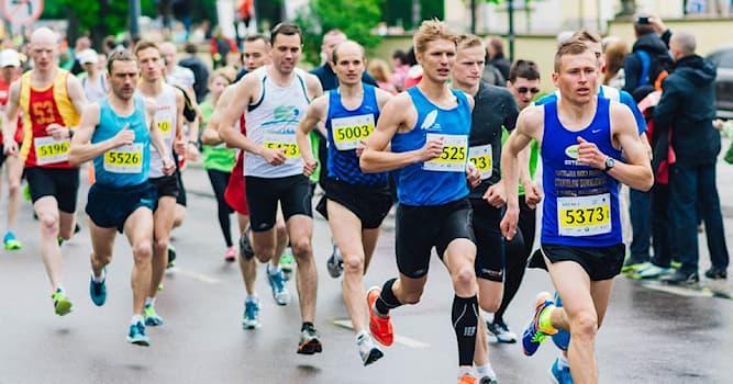 Спорт Вопрос: Как называют бегуна, лидирующего и задающего темп на средних и длинных беговых дистанциях?