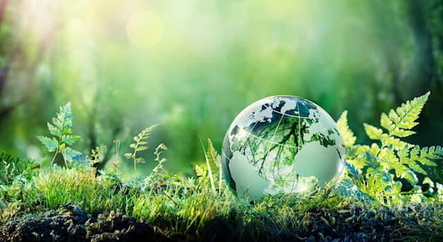 Наука Вопрос: Как называют совокупность всего живого на Земле?