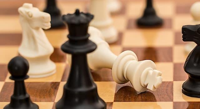 Спорт Вопрос: Как в шахматах и шашках называют дебют, в которых одна из сторон, по ряду причин, жертвует фигуру или шашку?