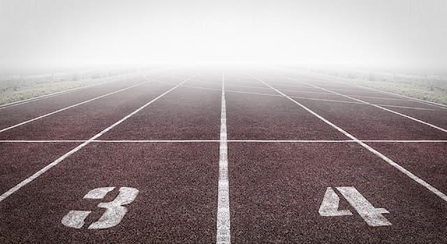 Спорт Вопрос: Какая дисциплина изучает спорт как социальное и культурное явление в его взаимосвязях с вопросами этики?