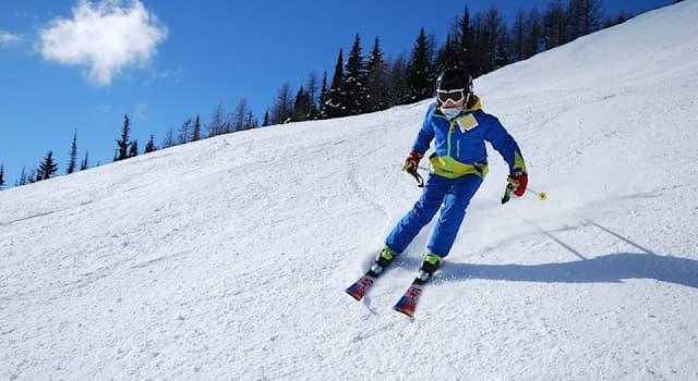 Спорт Вопрос: Какая фирма из перечисленных является производителем лыж и лыжной экипировки?