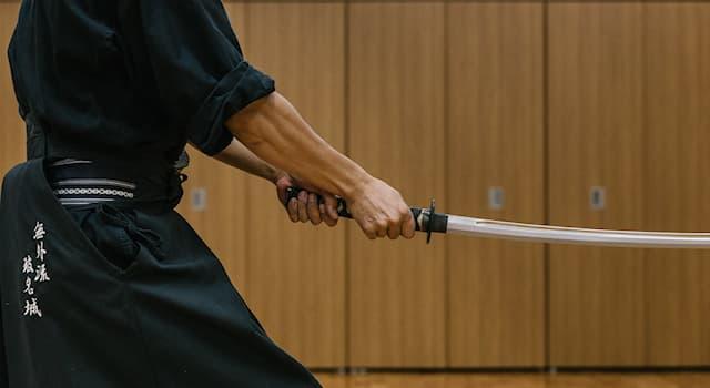 Спорт Вопрос: Какое оружие используется в японском боевом искусстве иайдо?