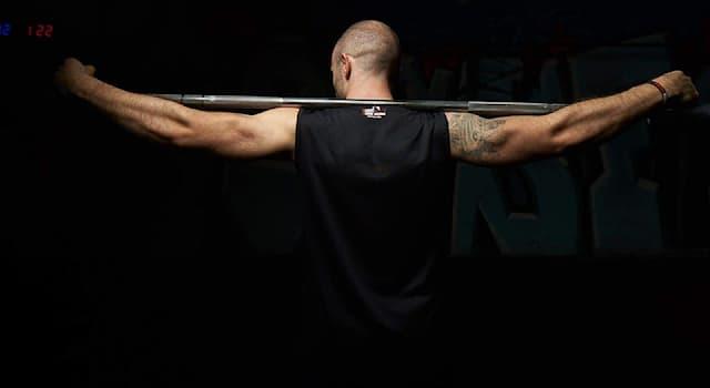 Спорт Вопрос: Какой инвентарь из перечисленных использует тяжелоатлет?