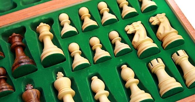 Спорт Вопрос: Какой шахматист является почётным гражданином штата Техас в США?