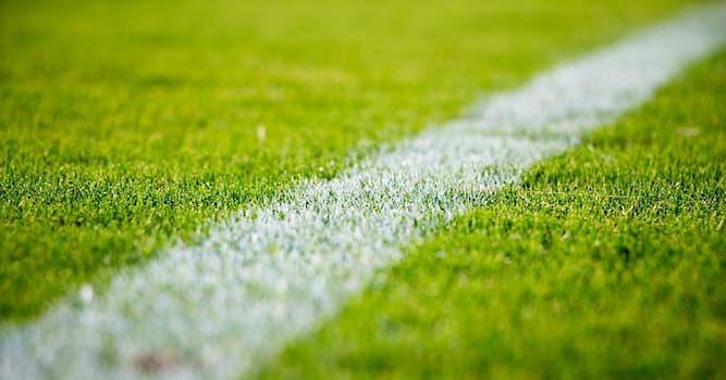 Спорт Вопрос: Какой вид спорта является самым популярным в Дании?