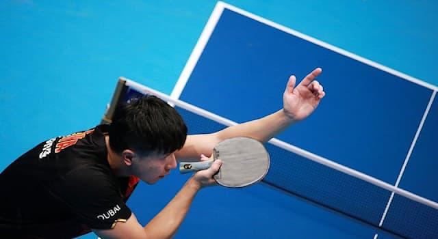 Спорт Вопрос: Какова длина стола для настольного тенниса?