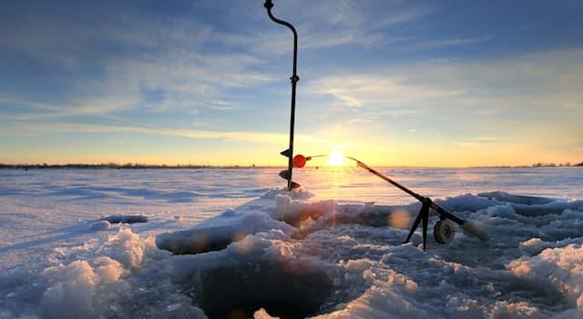 Природа Вопрос: Какую рыбу ловят зимой на стукалку?