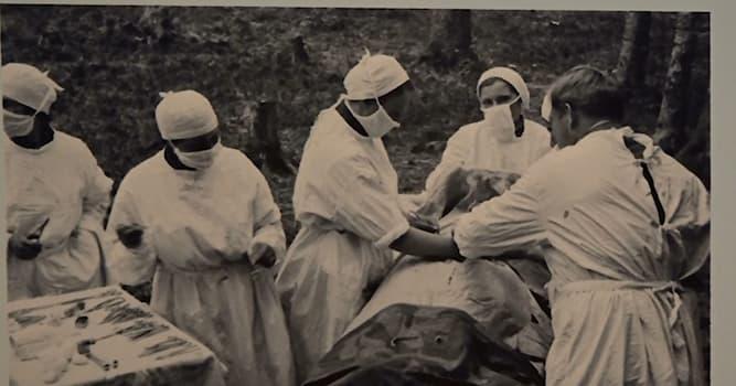 История Вопрос: Кто был главным военным хирургом во время Великой Отечественной войны?