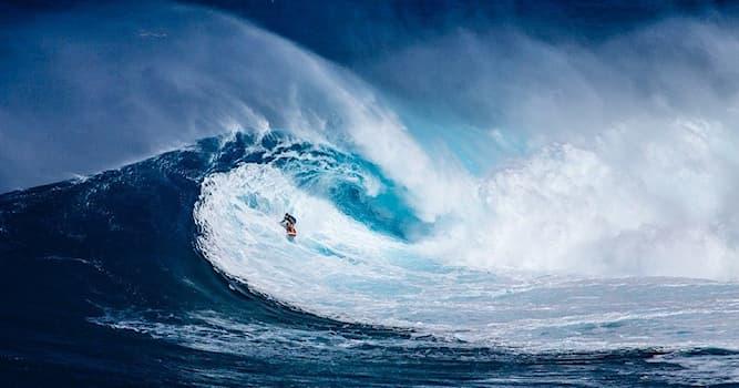 Спорт Вопрос: Кто из перечисленных – сёрфер, одолевший 78-ми футовую волну, установив тем самым мировой рекорд?