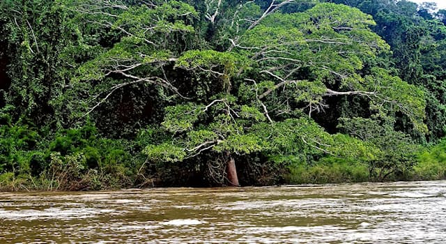 География Вопрос: На территории каких стран протекает река Усумасинта?