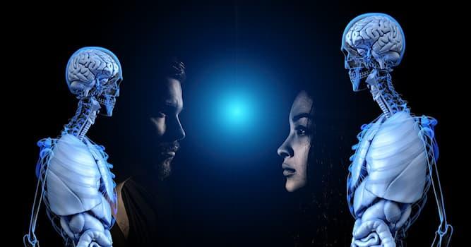 Наука Вопрос: От соотношения чего зависит общее поведение и темперамент человека по мнению Гиппократа?