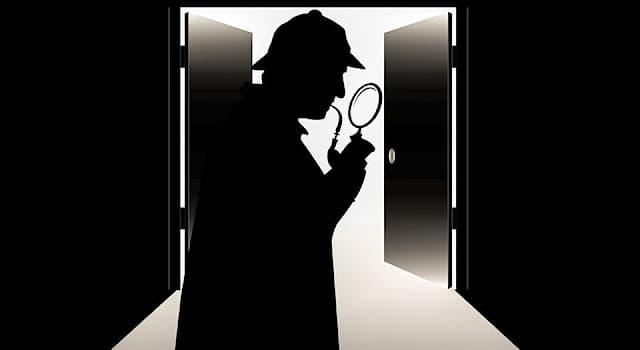 Культура Вопрос: Произведения какого жанра описывают процесс исследования и раскрытия обстоятельств загадочного происшествия?