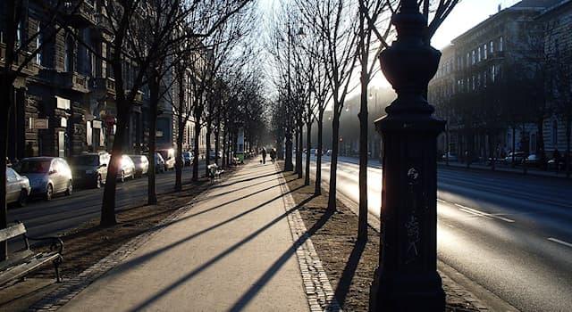 География Вопрос: Проспект Андраши — это парадный проспект какой европейской столицы?