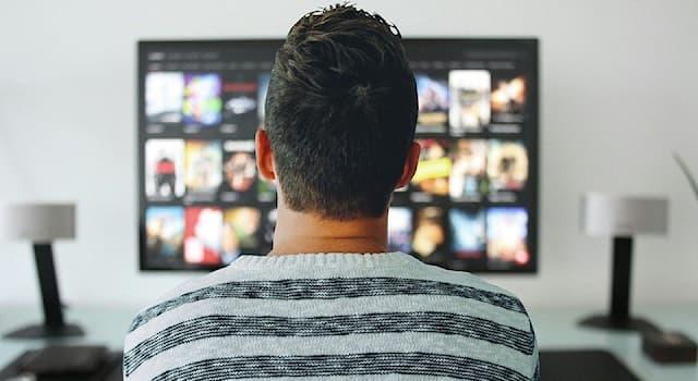 Общество Вопрос: Сюжетом какого телевизионного жанра является показ действий группы людей в обстановке, приближенной к жизни?