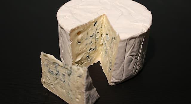 Общество Вопрос: В какой стране был впервые приготовлен сыр Бресс Блё?