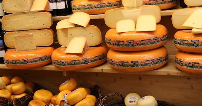 Общество Вопрос: В какой стране изготавливают сыр под названием Самсё?