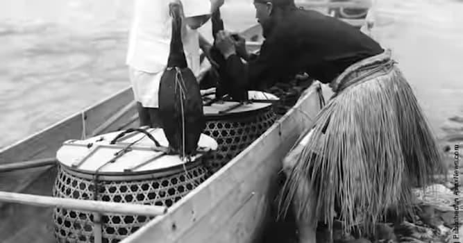"""География Вопрос: В какой стране находятся """"истоки"""" рыбной ловли с бакланами?"""