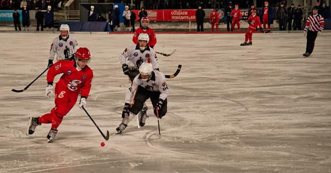 Спорт Вопрос: В какой стране в XIX веке возник хоккей с мячом в современном понимании спортивной дисциплины?