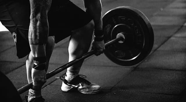 Спорт Вопрос: В каком веке началось формирование такой спортивной дисциплины как пауэрлифтинг в его современном виде?