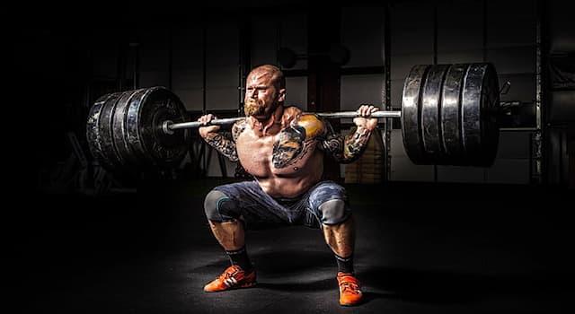 Спорт Вопрос: В современном пауэрлифтинге три упражнения: приседание, жим и тяга. Сколько подходов в каждом из них?