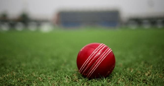 Sport Trivia Question: Which airborne bird was killed by a cricket ball at Lord's Cricket Ground in the year 1936?
