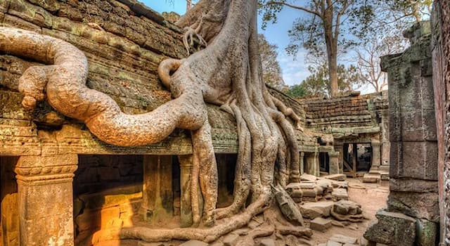 """Movies & TV Trivia Question: Which Cambodian temple was used in the film """"Lara Croft: Tomb Raider""""?"""