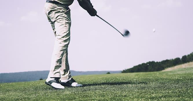 Спорт Вопрос: Из какого материала изготавливались самые первые мячи для гольфа?